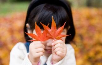 [카드뉴스] 낙엽 밟으며 걷기 좋은 한강 산책길 추천코스 3