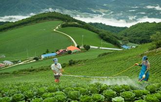 '20년 친환경농산물 생산자단체 세부 관리 계획(농산급식팀-351, '20.2.24, 공개)