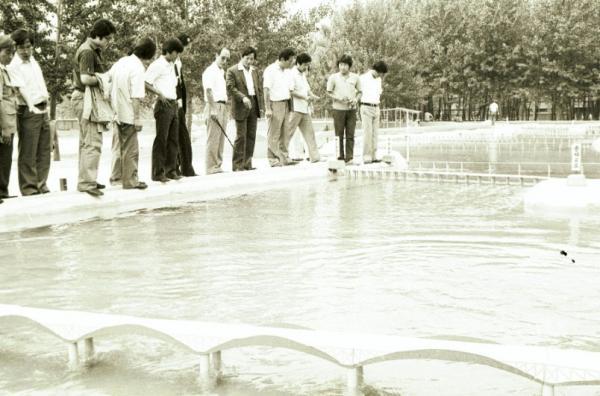 (1982-08-04)한강개발 수리모형 시찰